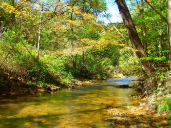 Picture of Appalachian Creek, Signifying How Hiring Hendrickson & Long's Experienced WV Lawyers Can Free Up Your Time to Get Back to Your Life in West Virginia (W and Pennsylvania (PA)